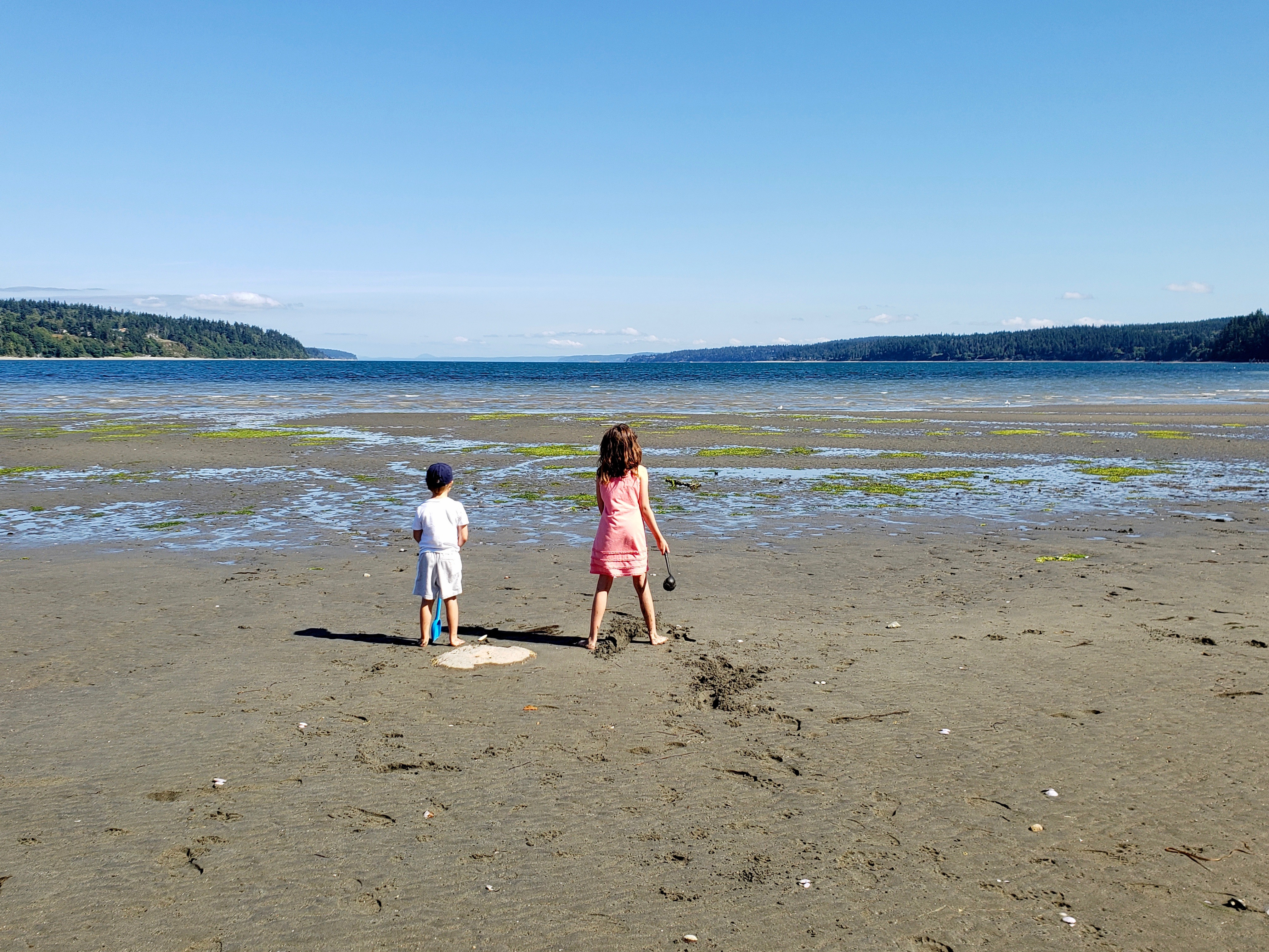 Play and explore on Holmes Harbor