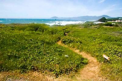 Your own private path to 6 miles of sandy beach!