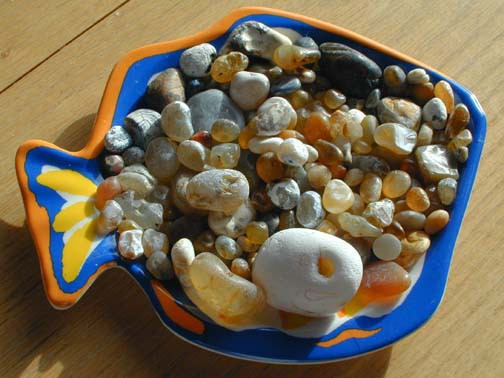 Agates from your back yard beach!