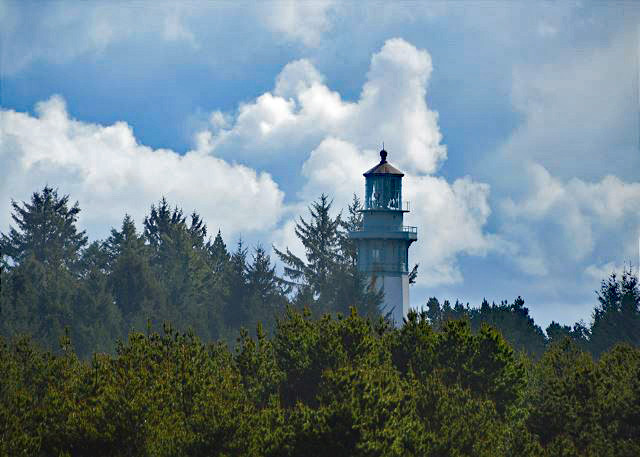 Grays Harbor Lighthouse View - 10 minute walk away!